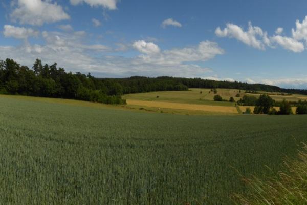 Unbenanntes_Panorama-2